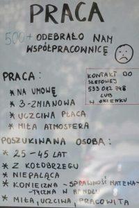 Ogłoszenie o pracę. 500+ odebrało nam współpracownicę (fot. fakt.pl)