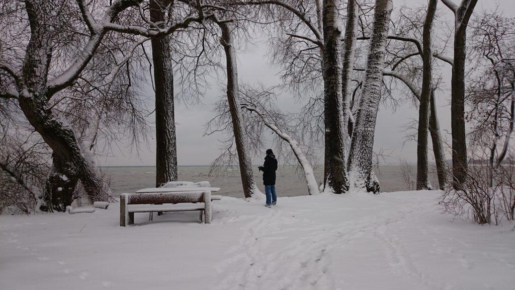 Darek przy ławce w parku. Wigilia. Święta Bożego Narodzenia. (fot. pixabay.com)