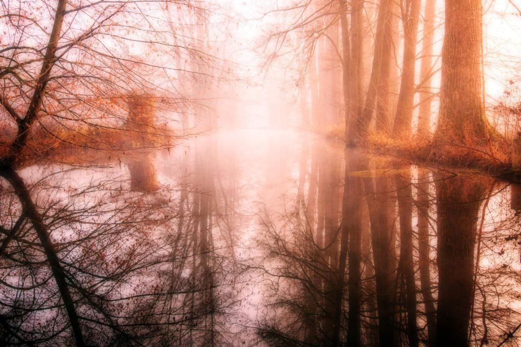 Mgieł mrok zamienić w świt